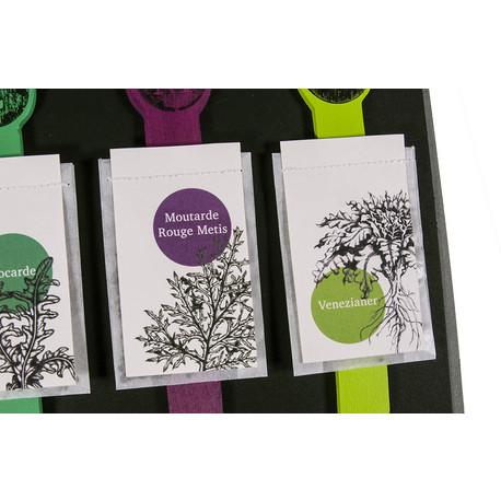 Geschenkset Tee-, Kräuter oder Salat-Samen